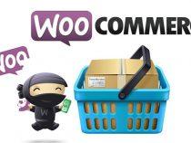 Woocommerce là gì? Tìm hiểu tổng quan về Plugin Woocommerce