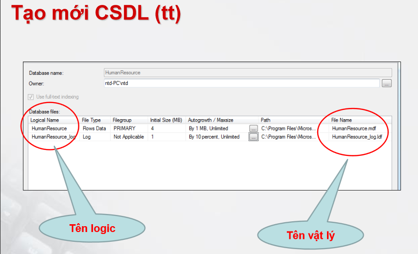 cach-tao-co-so-du-lieu-sql-server