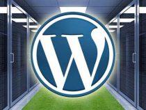 Thiết kế website wordpress theo yêu cầu