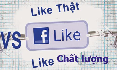 Dịch vụ tăng like fanpage facebook