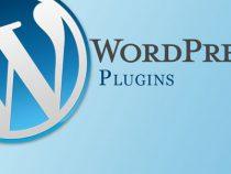 Plugin là gì? Plugin có vai trò gì trong wordpress?