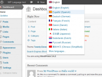 Top plugin làm web wordpress đa ngôn ngữ tốt nhất