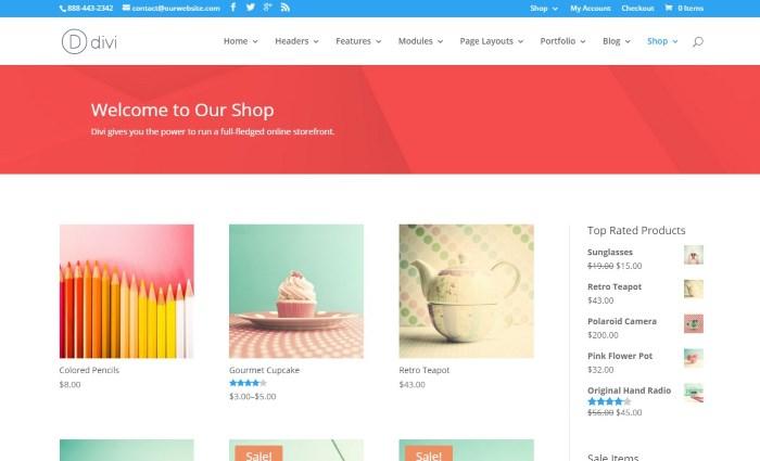 Theme wordpress bán hàng Divi