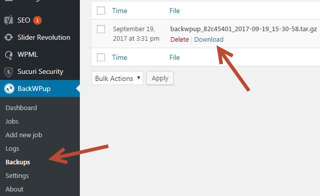 backup wordpress tự động với Plugin