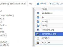 Cách đổi tên theme wordpress, dấu tên theme đang sử dụng