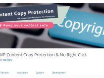 Cài đặt Plugin chống copy nội dung cho website wordpress