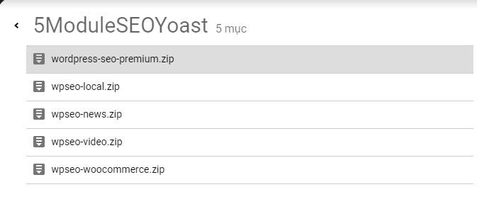 mua plugin yoast seo premium