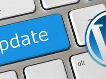 Hướng dẫn cách tắt tính năng tự động update của wordpress