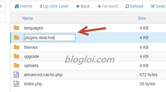 cách sửa lỗi internal server error trong wordpress